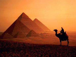 (El desierto es un ambiente terrestre)