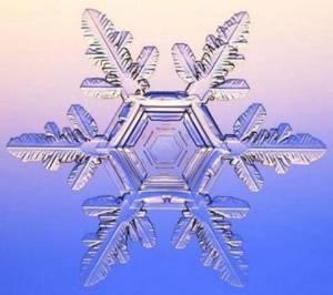 (Cuando nieva, caen copos hexagonales)