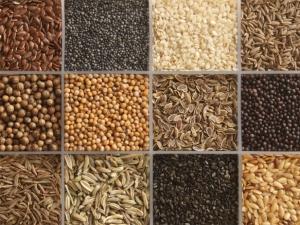 (Hay distintos tipos de semillas)