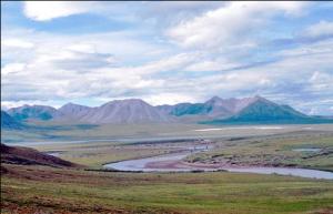 (La tundra se caracteriza por su suelos congelados)