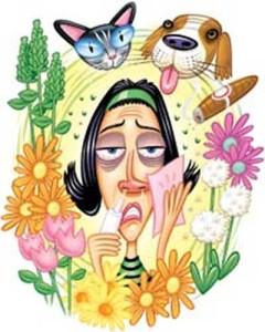 (Las alergias pueden clasificarse según el origen del alérgeno)