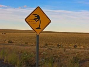 (El viento es un fenómeno climático )