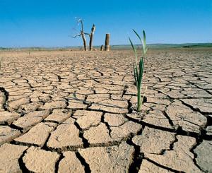 (Las sequías son desastres naturales)