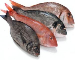 (Los pescados se pueden clasificar de distintas formas)