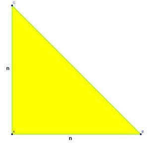 (Triángulo rectángulo)