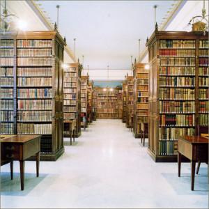 (En las bibliotecas se conservan libros)