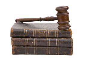 (Los reglamentos son normas jurídicas emanadas de la Administración Pública)